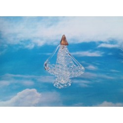 Marturie nunta vapor din sticla