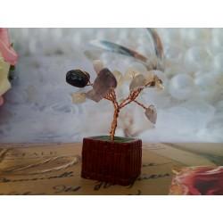 Marturie nunta bonsai cu pietre semipretioase
